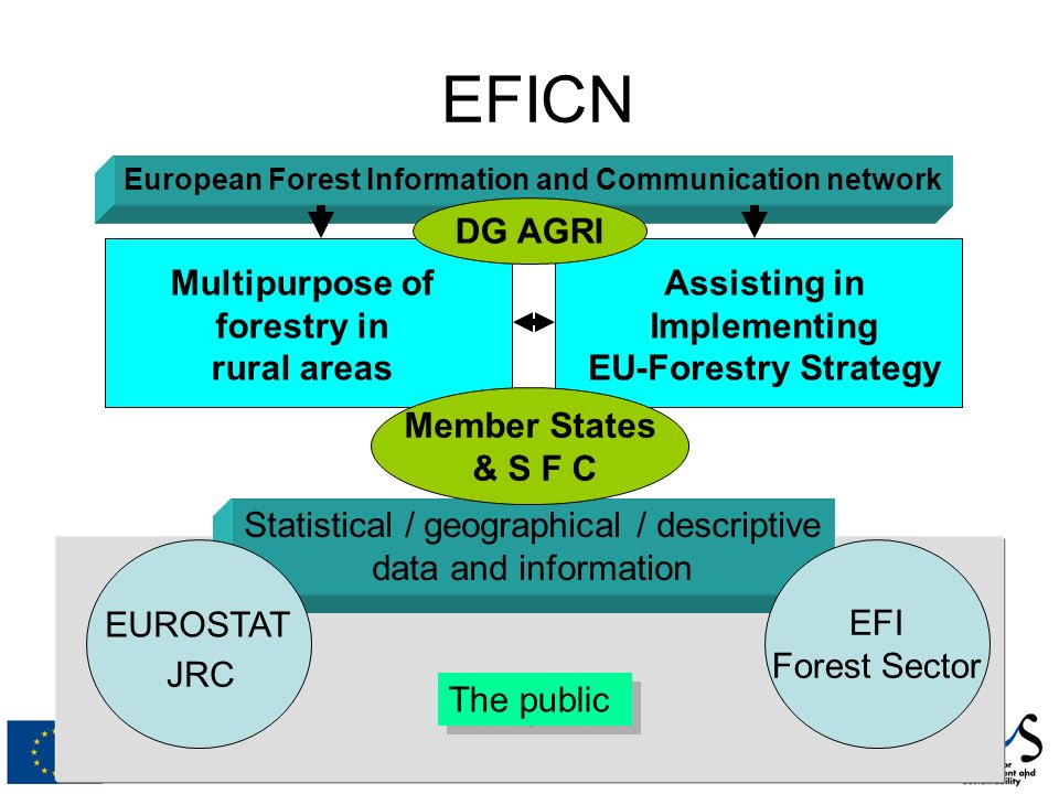 EFICN European Forest Information and Communication network Multipurpose of forestry in rural areas Assisting in Implementing EU-Forestry Strategy Statistical / geographical / descriptive data and information EUROSTAT JRC DG AGRI Member States & S F C EFI Forest Sector The public