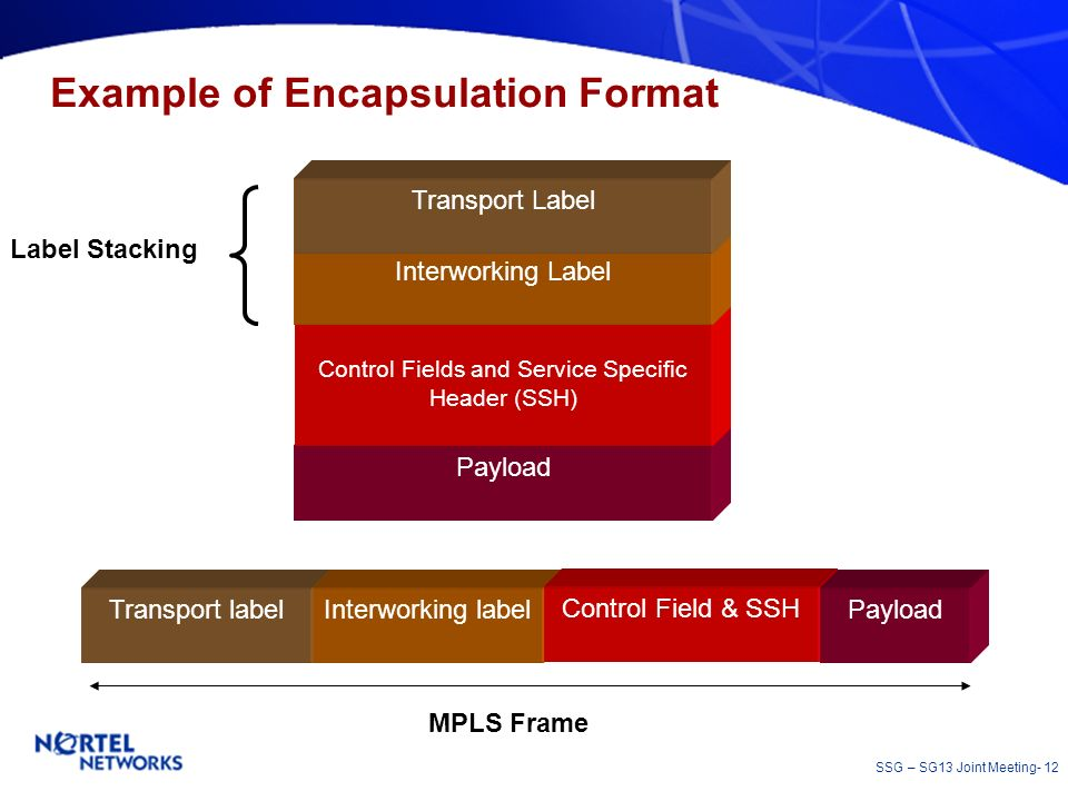 SSG – SG13 Joint Meeting- 12 Example of Encapsulation Format Payload Control Fields and Service Specific Header (SSH) Interworking Label Transport Lab