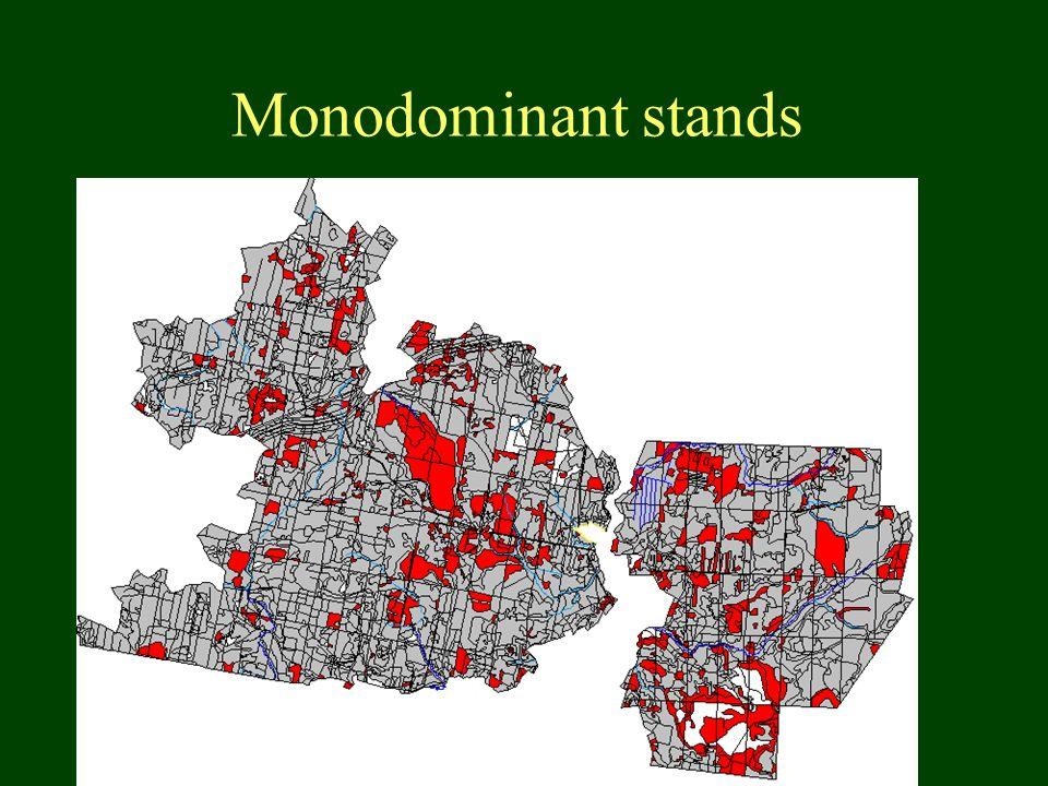 Monodominant stands