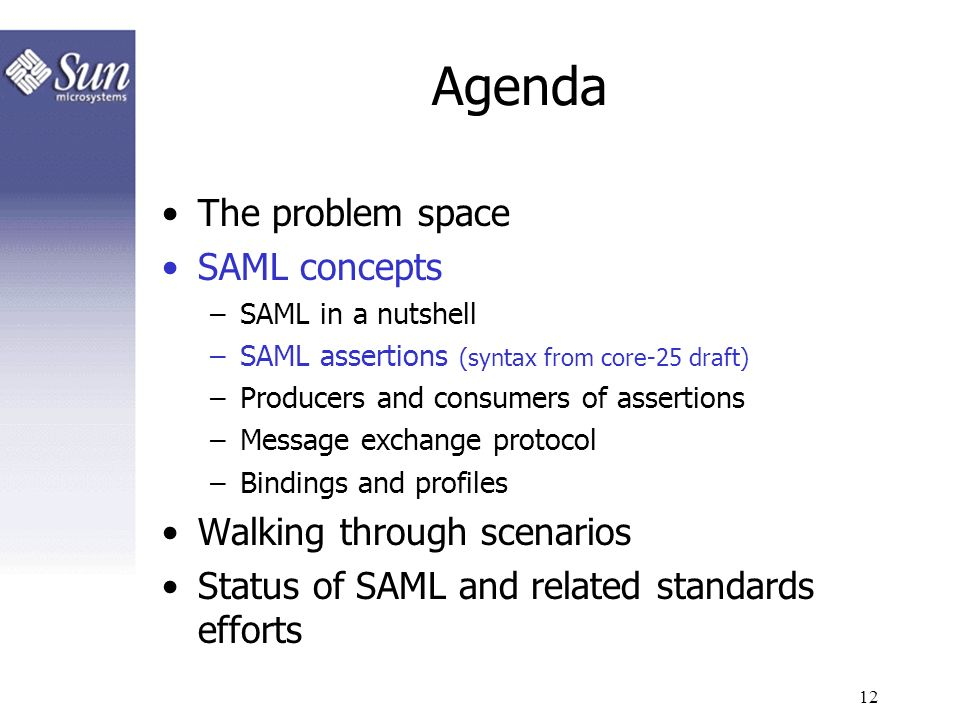 12 Agenda The problem space SAML concepts –SAML in a nutshell –SAML assertions (syntax from core-25 draft) –Producers and consumers of assertions –Mes