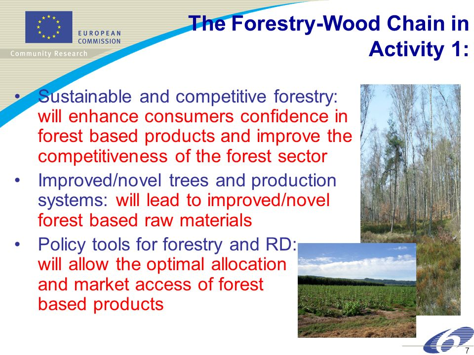 7 The Forestry-Wood Chain in Activity 1: Sustainable and competitive forestry: will enhance consumers confidence in forest based products and improve