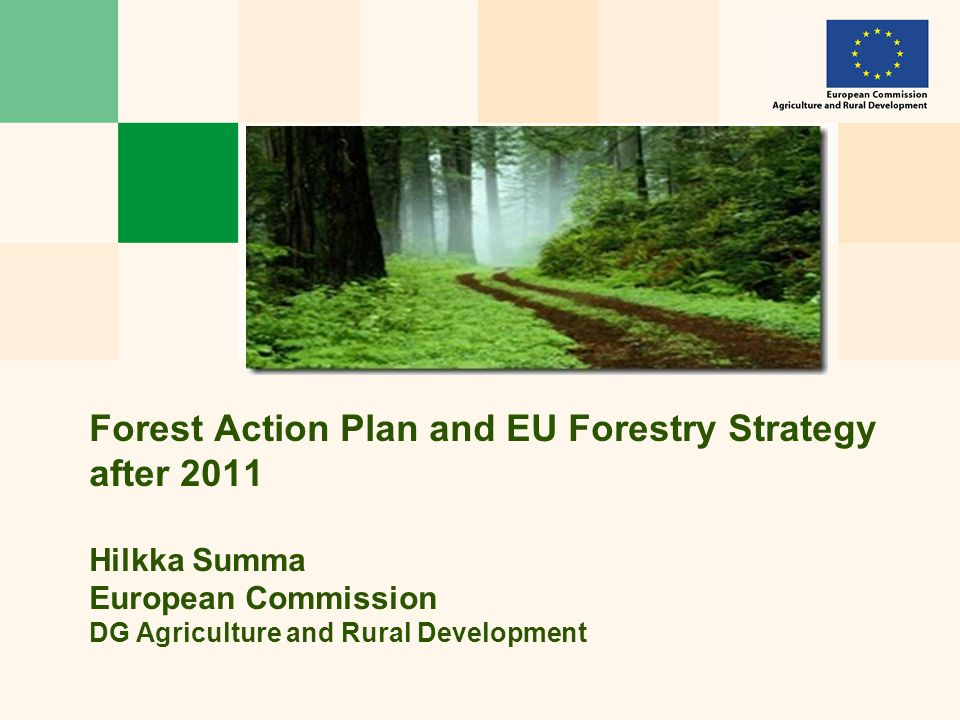 Forest Action Plan and EU Forestry Strategy after 2011 Hilkka Summa European Commission DG Agriculture and Rural Development