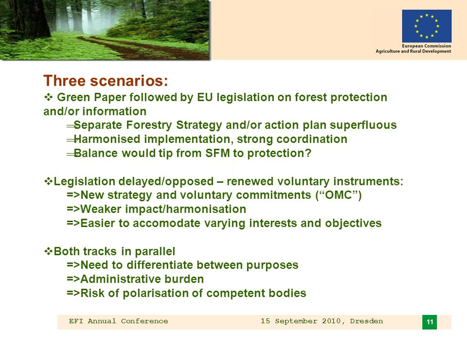 EFI Annual Conference 15 September 2010, Dresden 11 Three scenarios: Green Paper followed by EU legislation on forest protection and/or information Separate Forestry Strategy and/or action plan superfluous Harmonised implementation, strong coordination Balance would tip from SFM to protection.