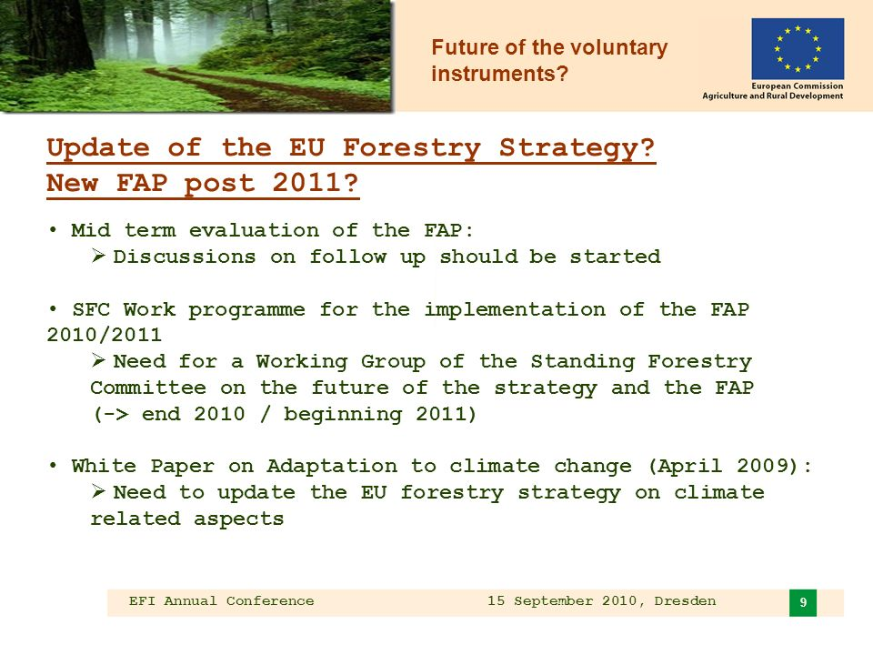 EFI Annual Conference 15 September 2010, Dresden 9 Update of the EU Forestry Strategy.