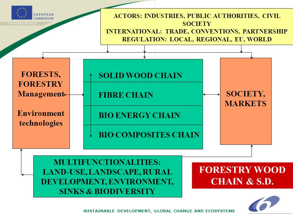 SUSTAINABLE DEVELOPMENT, GLOBAL CHANGE AND ECOSYSTEMS ACTORS: INDUSTRIES, PUBLIC AUTHORITIES, CIVIL SOCIETY INTERNATIONAL: TRADE, CONVENTIONS, PARTNERSHIP REGULATION: LOCAL, REGIONAL, EU, WORLD FORESTS, FORESTRY Management Environment technologies SOCIETY, MARKETS MULTIFUNCTIONALITIES: LAND-USE, LANDSCAPE, RURAL DEVELOPMENT, ENVIRONMENT, SINKS & BIODIVERSITY SOLID WOOD CHAIN FIBRE CHAIN BIO ENERGY CHAIN BIO COMPOSITES CHAIN FORESTRY WOOD CHAIN & S.D.