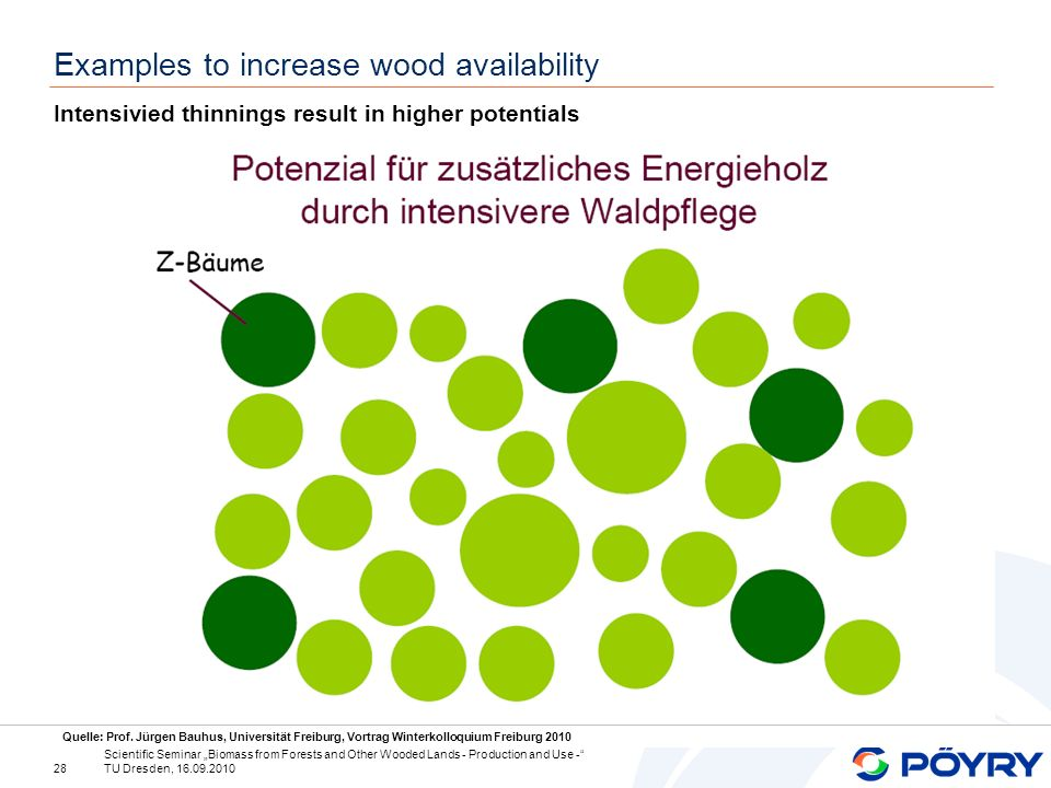 28 Scientific Seminar Biomass from Forests and Other Wooded Lands - Production and Use - TU Dresden, 16.09.2010 Examples to increase wood availability Intensivied thinnings result in higher potentials Quelle: Prof.