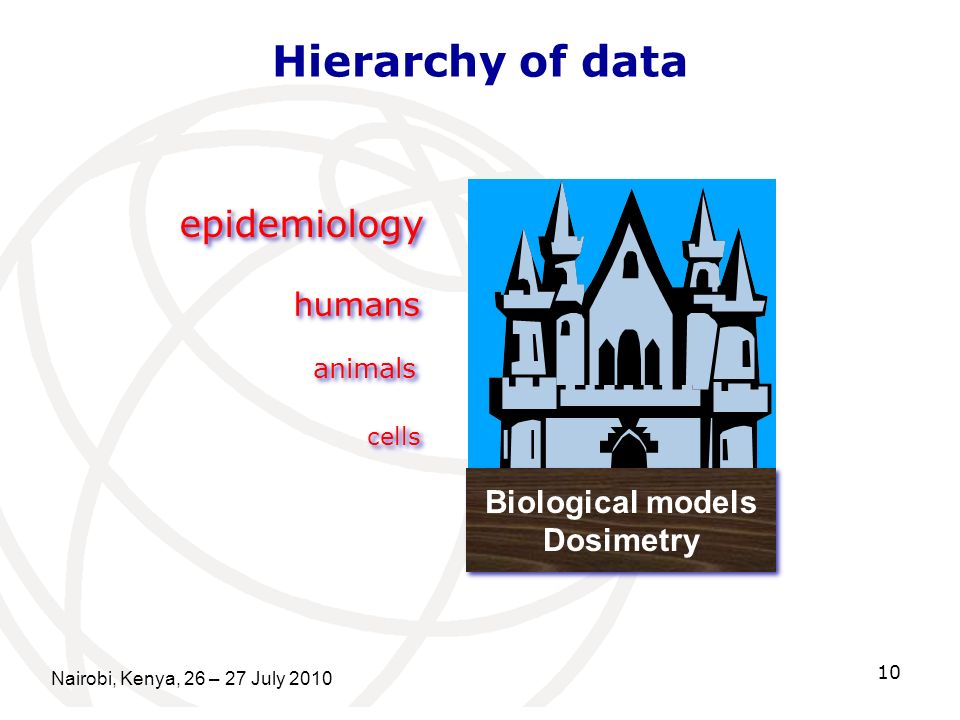Nairobi, Kenya, 26 – 27 July 2010 10 Hierarchy of data Biological models Dosimetry Biological models Dosimetry animals cells epidemiology humans