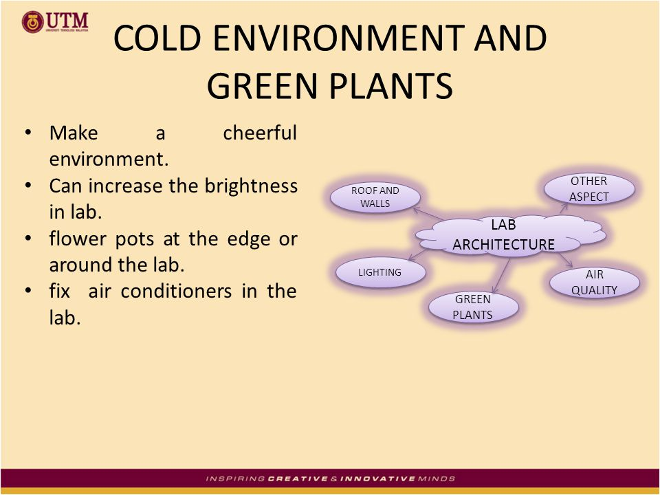 COLD ENVIRONMENT AND GREEN PLANTS Make a cheerful environment. Can increase the brightness in lab. flower pots at the edge or around the lab. fix air