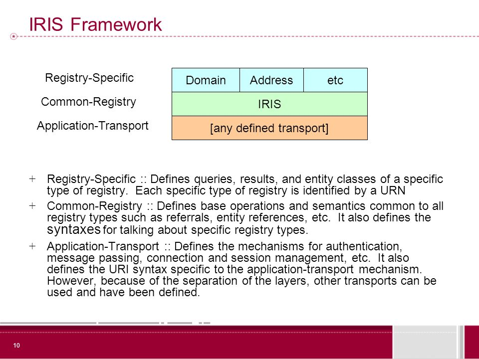 10 IRIS Framework + Registry-Specific :: Defines queries, results, and entity classes of a specific type of registry.