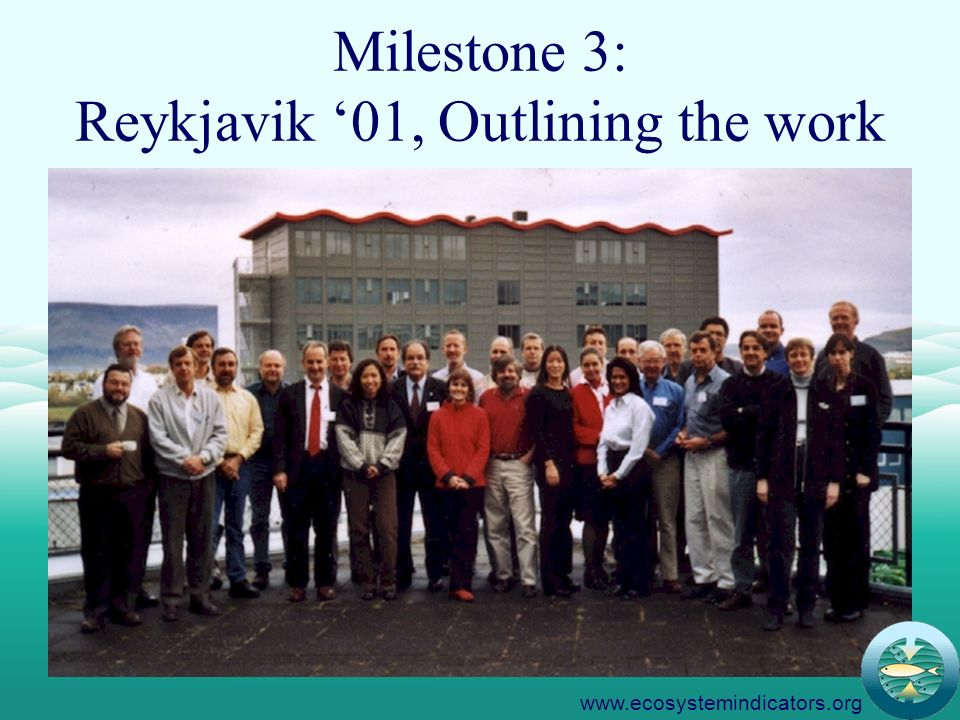 6 Milestone 3: Reykjavik 01, Outlining the work www.ecosystemindicators.org