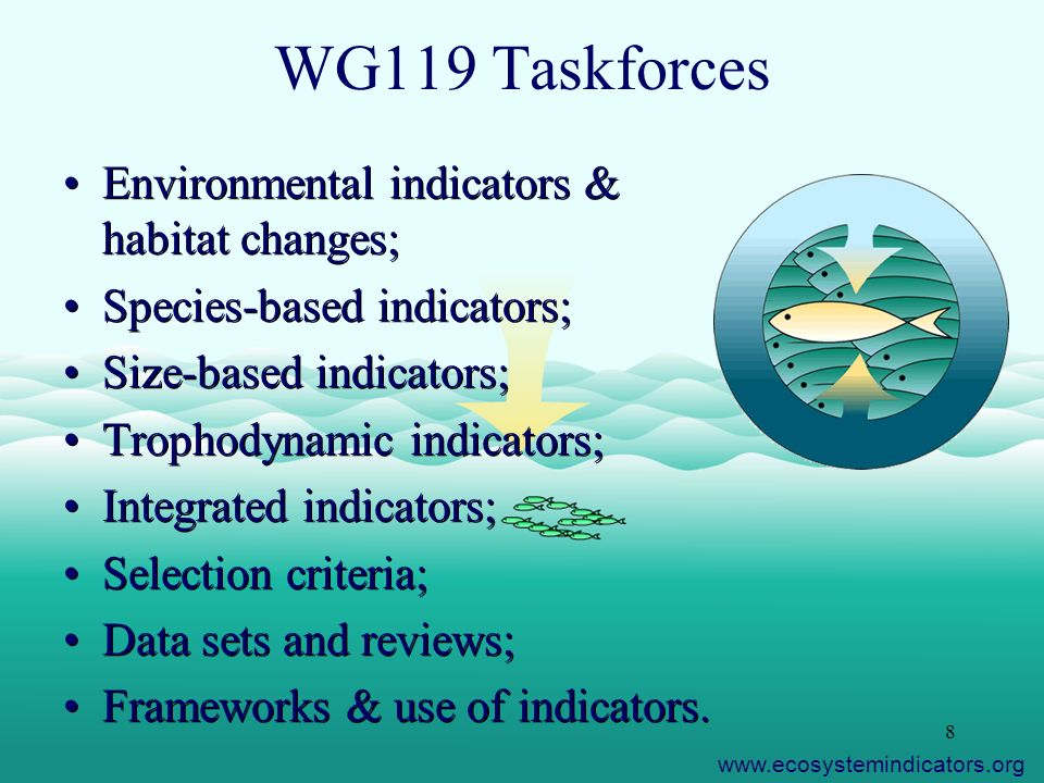 8 WG119 Taskforces Environmental indicators & habitat changes; Species-based indicators; Size-based indicators; Trophodynamic indicators; Integrated indicators; Selection criteria; Data sets and reviews; Frameworks & use of indicators.