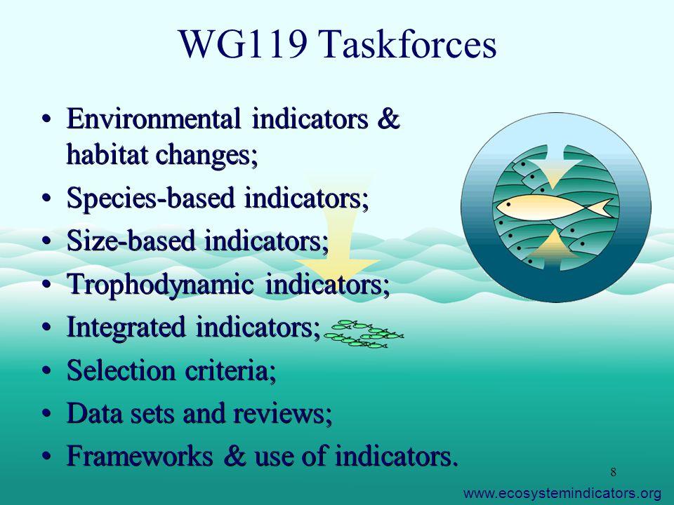 8 WG119 Taskforces Environmental indicators & habitat changes; Species-based indicators; Size-based indicators; Trophodynamic indicators; Integrated i