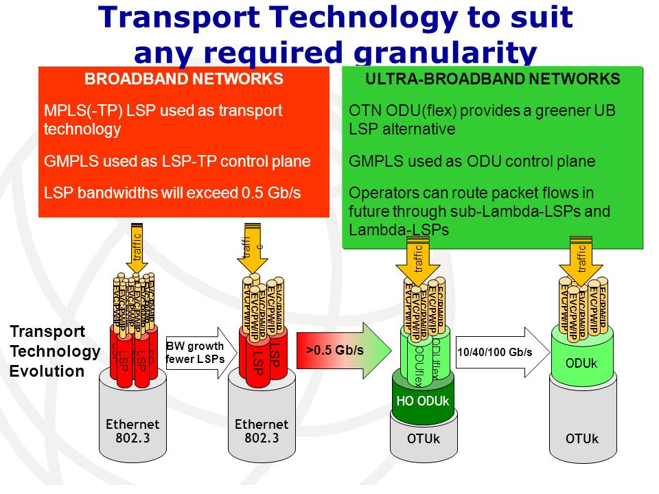 BROADBAND NETWORKS MPLS(-TP) LSP used as transport technology GMPLS used as LSP-TP control plane LSP bandwidths will exceed 0.5 Gb/s Transport Technol