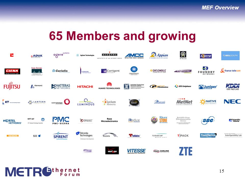 15 65 Members and growing MEF Overview