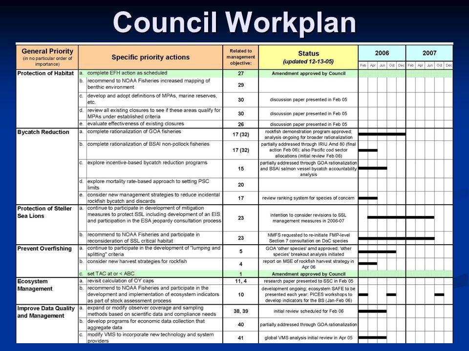Council Workplan