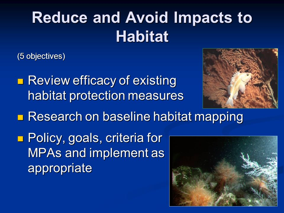 Reduce and Avoid Impacts to Habitat (5 objectives) Review efficacy of existing habitat protection measures Review efficacy of existing habitat protect