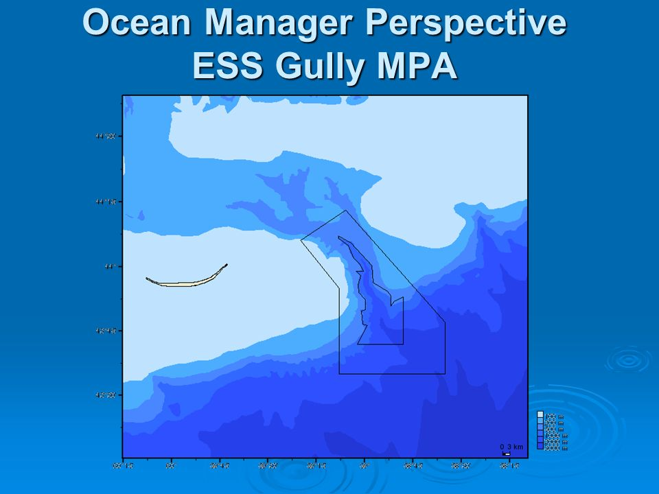 Ocean Manager Perspective ESS Gully MPA