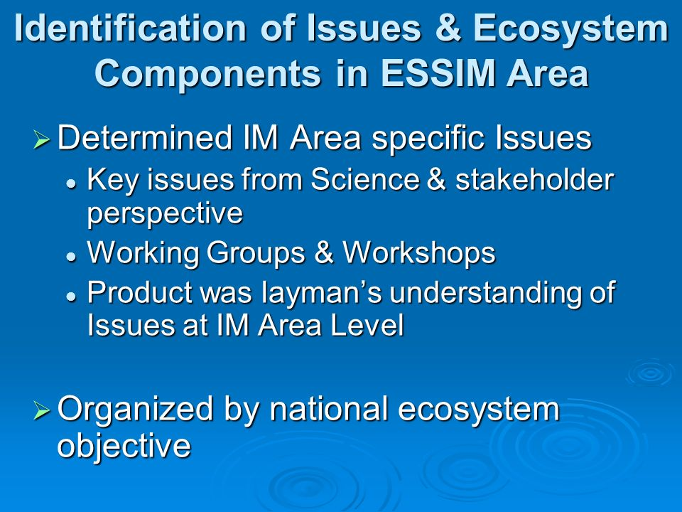 Determined IM Area specific Issues Determined IM Area specific Issues Key issues from Science & stakeholder perspective Key issues from Science & stakeholder perspective Working Groups & Workshops Working Groups & Workshops Product was laymans understanding of Issues at IM Area Level Product was laymans understanding of Issues at IM Area Level Organized by national ecosystem objective Organized by national ecosystem objective Identification of Issues & Ecosystem Components in ESSIM Area