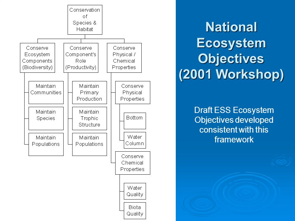 National Ecosystem Objectives (2001 Workshop) Draft ESS Ecosystem Objectives developed consistent with this framework