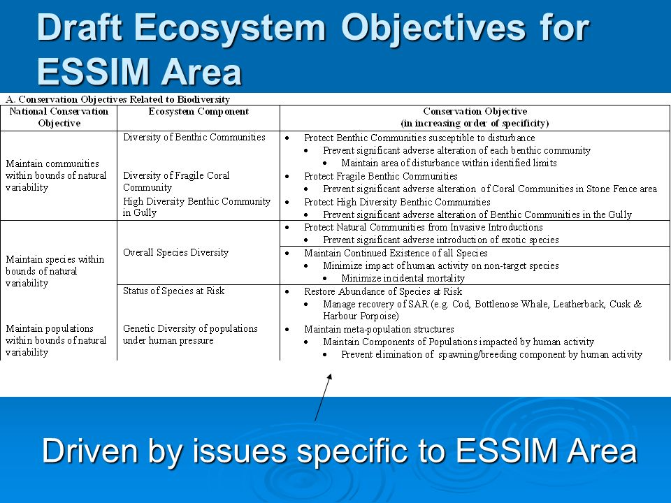 Draft Ecosystem Objectives for ESSIM Area Driven by issues specific to ESSIM Area