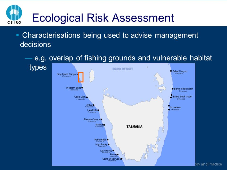 Australian EBFM: Theory and Practice Ecological Risk Assessment Characterisations being used to advise management decisions e.g.
