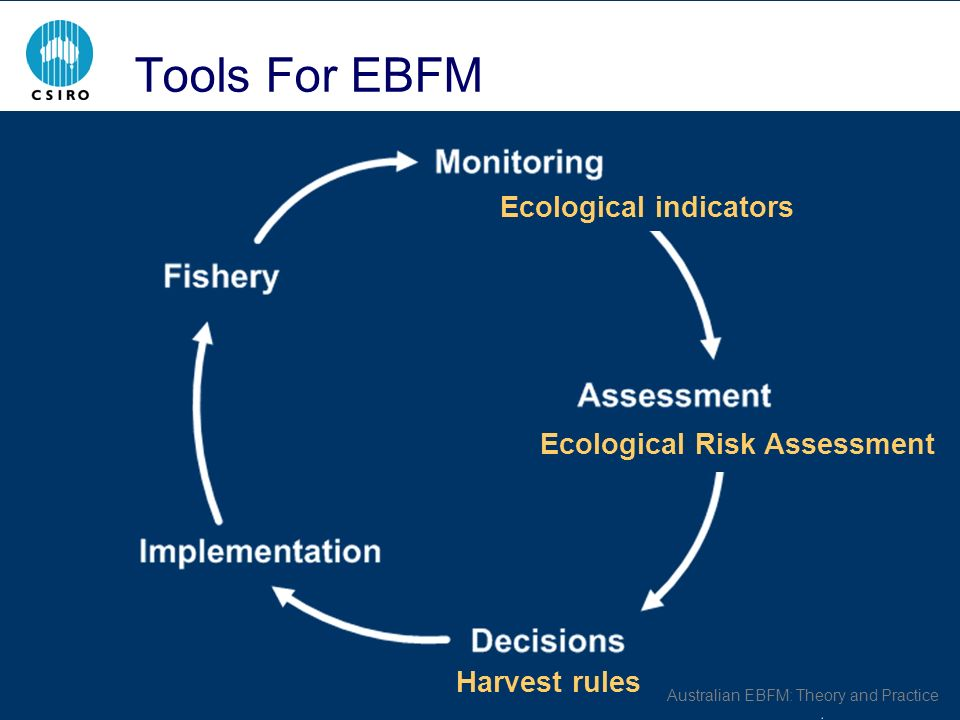 Australian EBFM: Theory and Practice Tools For EBFM Harvest rules Ecological Risk Assessment Ecological indicators
