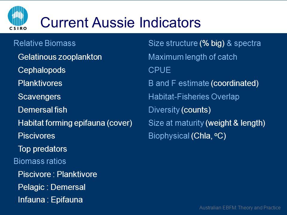 Australian EBFM: Theory and Practice Current Aussie Indicators Relative BiomassSize structure (% big) & spectra Gelatinous zooplanktonMaximum length of catch CephalopodsCPUE PlanktivoresB and F estimate (coordinated) ScavengersHabitat-Fisheries Overlap Demersal fishDiversity (counts) Habitat forming epifauna (cover)Size at maturity (weight & length) PiscivoresBiophysical (Chla, o C) Top predators Biomass ratios Piscivore : Planktivore Pelagic : Demersal Infauna : Epifauna