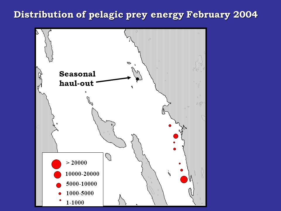 Seasonal haul-out > 20000 10000-20000 5000-10000 1000-5000 Distribution of pelagic prey energy February 2004 1-1000