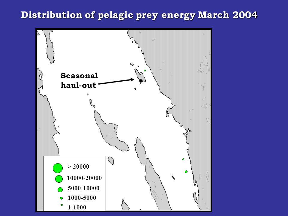 Seasonal haul-out > 20000 10000-20000 5000-10000 1000-5000 Distribution of pelagic prey energy March 2004 1-1000