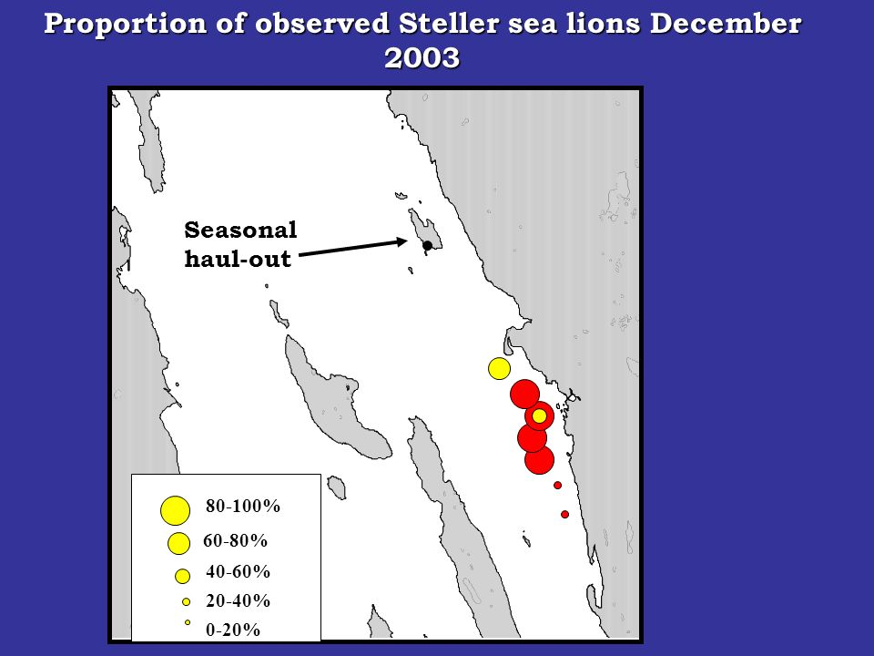 Seasonal haul-out 80-100% 60-80% 40-60% 20-40% 0-20% Proportion of observed Steller sea lions December 2003