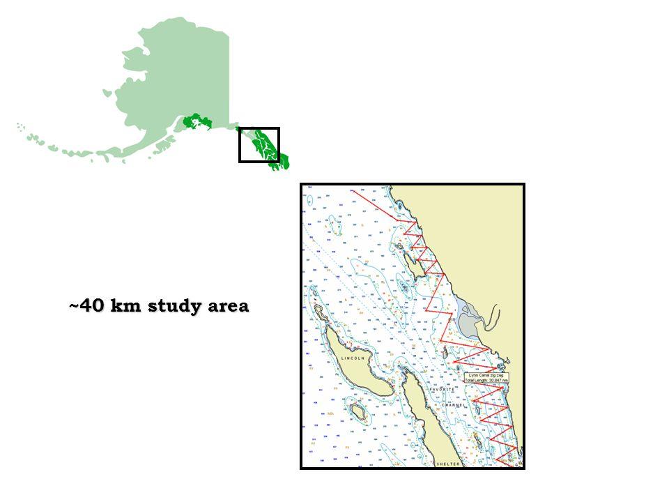 ~40 km study area
