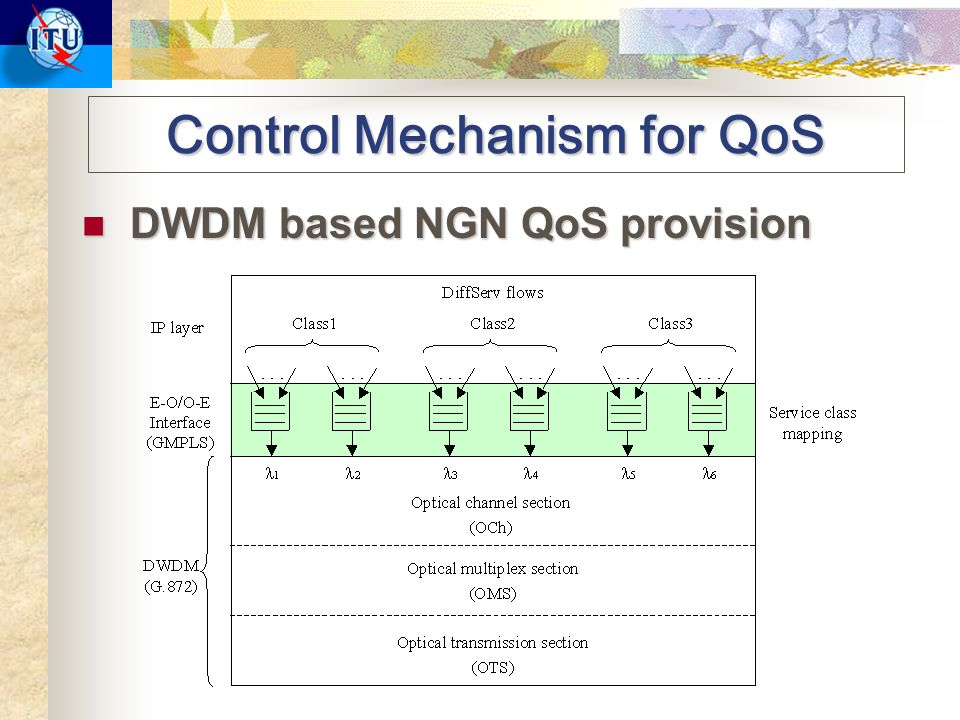 Control Mechanism for QoS DWDM based NGN QoS provision DWDM based NGN QoS provision