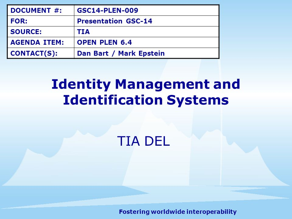 Fostering worldwide interoperability 2 Overview (1) TIAs standards work that relates to managing the identity of a user of a system, includes such things as the assignment functions of unique identifiers, such as ESNs, UIMs, MEIDs, E-UIMs, and other identifiers.