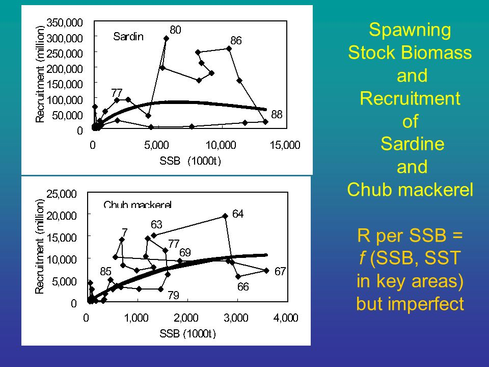 Spawning Stock Biomass and Recruitment of Sardine and Chub mackerel R per SSB = f (SSB, SST in key areas) but imperfect