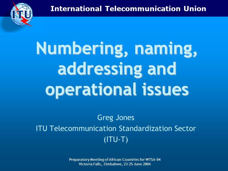 International Telecommunication Union Preparatory Meeting of African Countries for WTSA-04 Victoria Falls, Zimbabwe, 23-25 June 2004 Numbering, naming