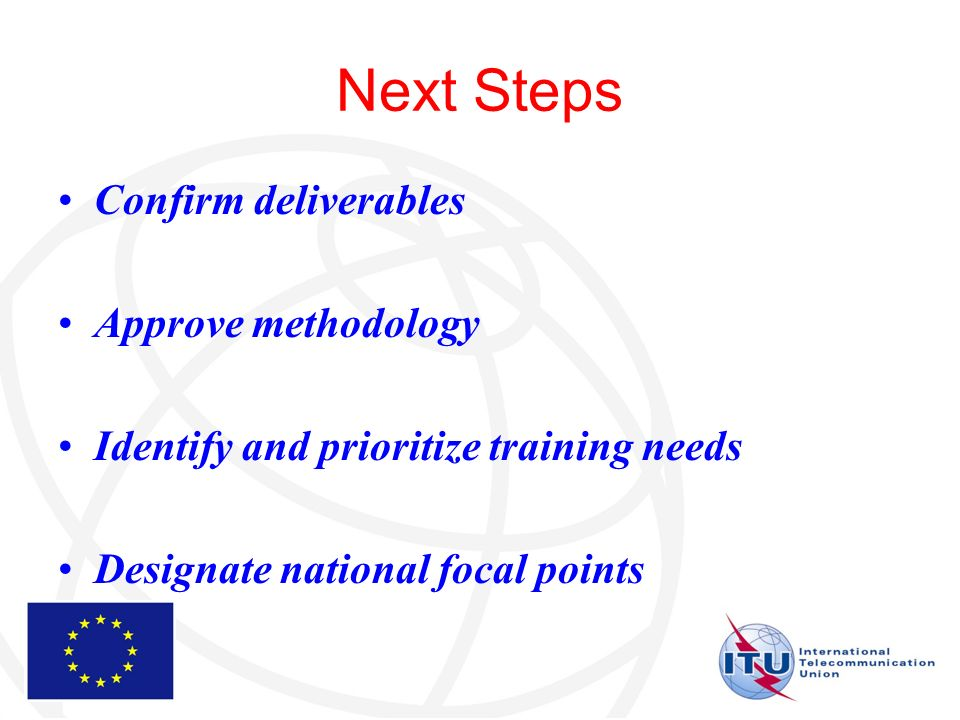 Next Steps Confirm deliverables Approve methodology Identify and prioritize training needs Designate national focal points