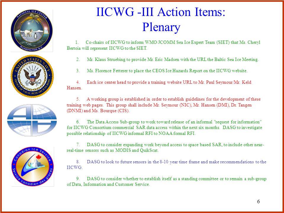 6 IICWG -III Action Items: Plenary 1.