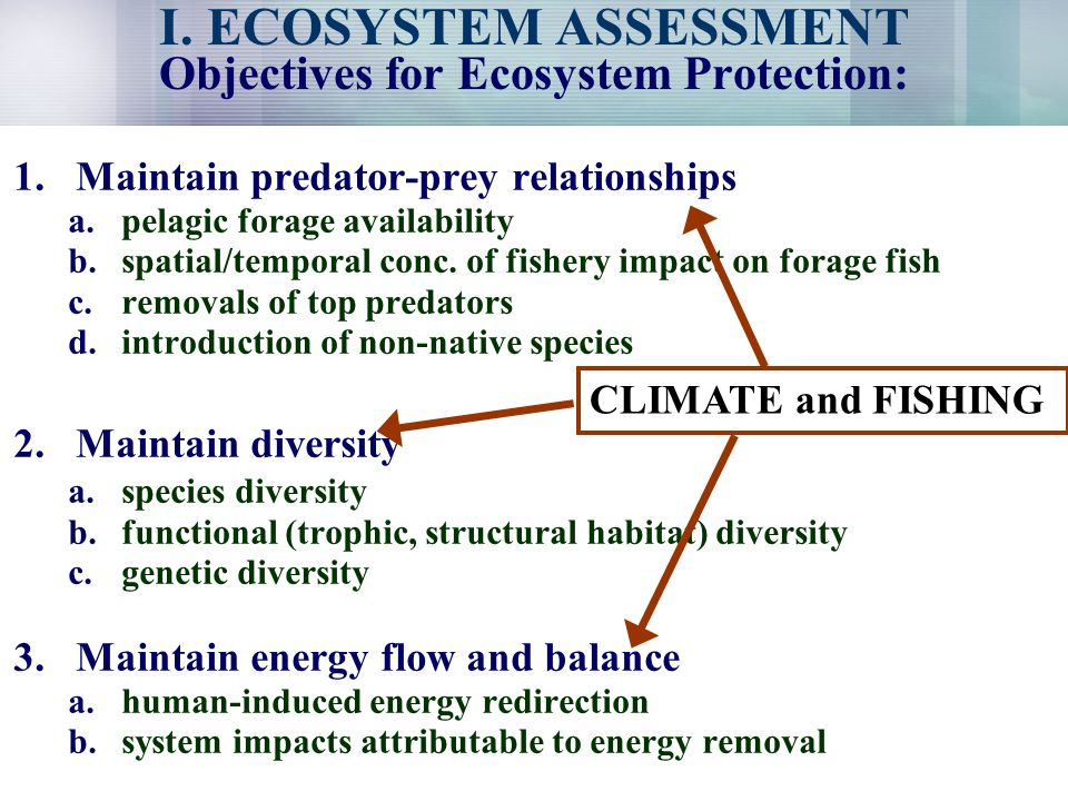 I. ECOSYSTEM ASSESSMENT Objectives for Ecosystem Protection: 1.Maintain predator-prey relationships a.pelagic forage availability b.spatial/temporal c