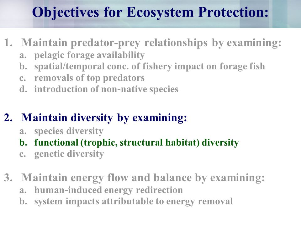 Objectives for Ecosystem Protection: 1.Maintain predator-prey relationships by examining: a.pelagic forage availability b.spatial/temporal conc.