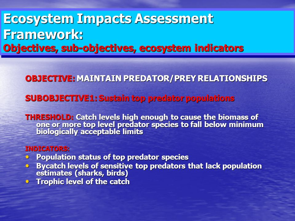 Ecosystem Impacts Assessment Framework: Objectives, sub-objectives, ecosystem indicators OBJECTIVE: MAINTAIN PREDATOR/PREY RELATIONSHIPS SUBOBJECTIVE1: Sustain top predator populations THRESHOLD: Catch levels high enough to cause the biomass of one or more top level predator species to fall below minimum biologically acceptable limits INDICATORS: Population status of top predator species Population status of top predator species Bycatch levels of sensitive top predators that lack population estimates (sharks, birds) Bycatch levels of sensitive top predators that lack population estimates (sharks, birds) Trophic level of the catch Trophic level of the catch