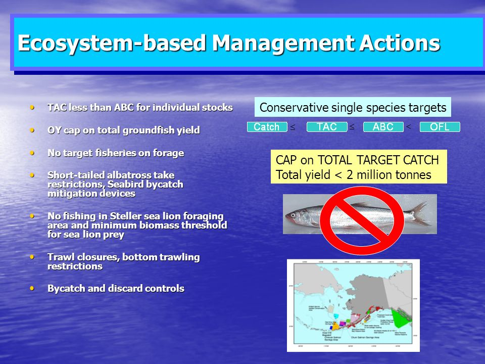 Ecosystem-based Management Actions TAC less than ABC for individual stocks TAC less than ABC for individual stocks OY cap on total groundfish yield OY cap on total groundfish yield No target fisheries on forage No target fisheries on forage Short-tailed albatross take restrictions, Seabird bycatch mitigation devices Short-tailed albatross take restrictions, Seabird bycatch mitigation devices No fishing in Steller sea lion foraging area and minimum biomass threshold for sea lion prey No fishing in Steller sea lion foraging area and minimum biomass threshold for sea lion prey Trawl closures, bottom trawling restrictions Trawl closures, bottom trawling restrictions Bycatch and discard controls Bycatch and discard controls Conservative single species targets CAP on TOTAL TARGET CATCH Total yield < 2 million tonnes