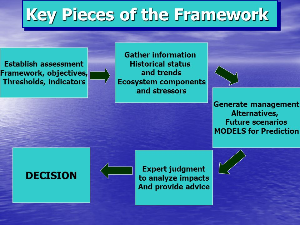Gather information Historical status and trends Ecosystem components and stressors Establish assessment Framework, objectives, Thresholds, indicators Generate management Alternatives, Future scenarios MODELS for Prediction Expert judgment to analyze impacts And provide advice DECISION Key Pieces of the Framework
