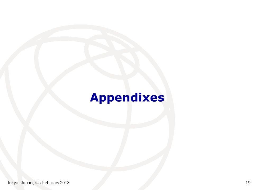 Appendixes Tokyo, Japan, 4-5 February 2013 19