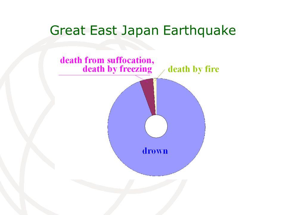 Great East Japan Earthquake