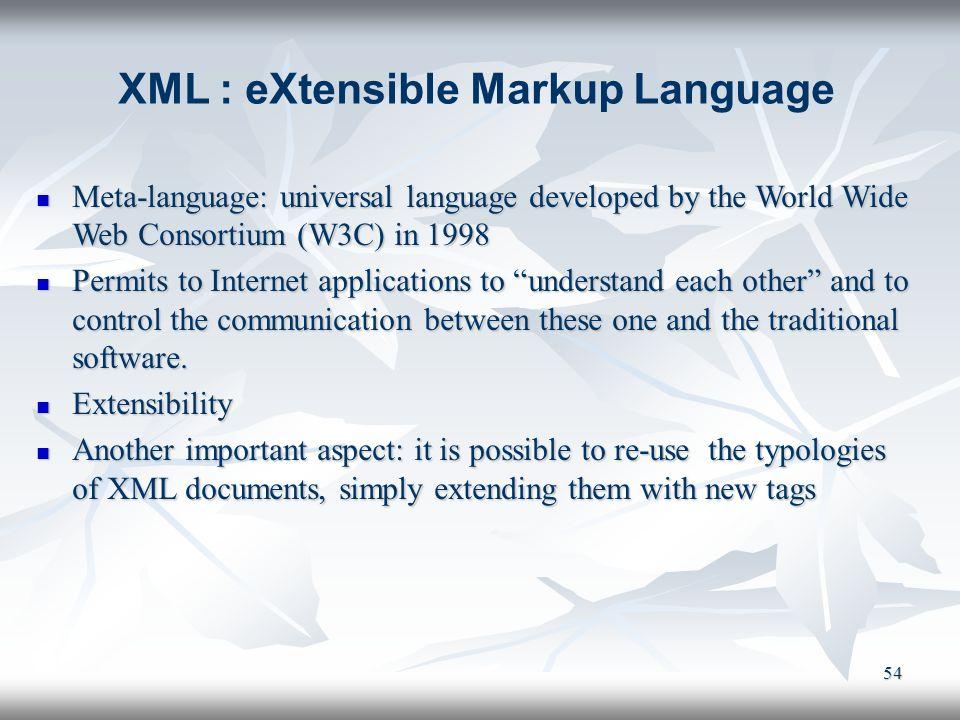 54 Meta-language: universal language developed by the World Wide Web Consortium (W3C) in 1998 Meta-language: universal language developed by the World