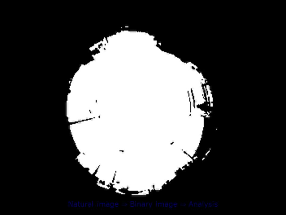 Natural image Binary image Analysis