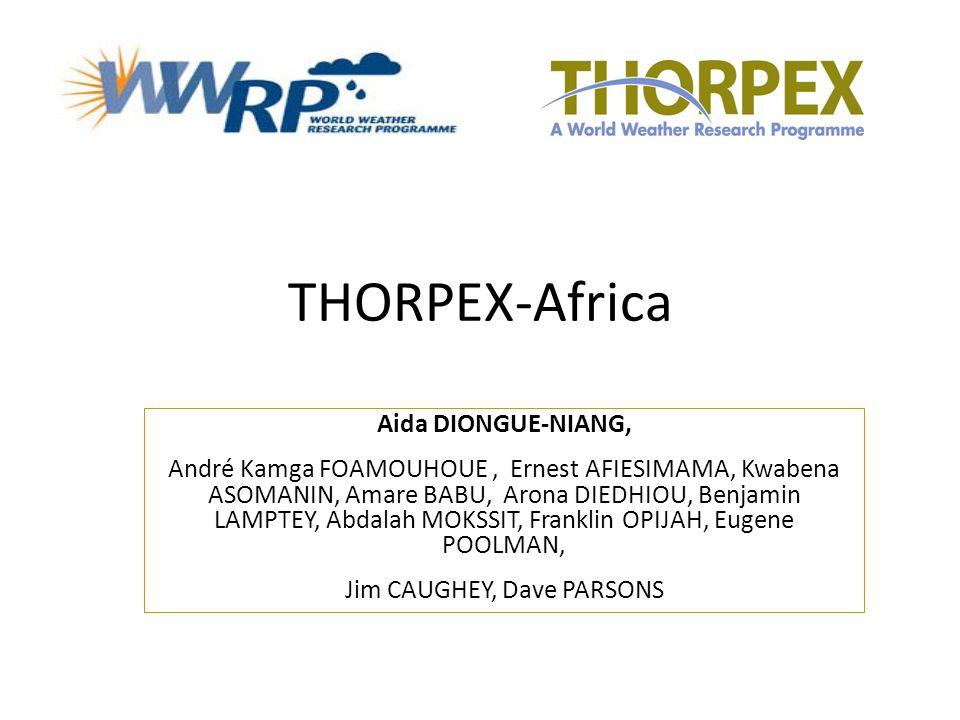 THORPEX-Africa Aida DIONGUE-NIANG, André Kamga FOAMOUHOUE, Ernest AFIESIMAMA, Kwabena ASOMANIN, Amare BABU, Arona DIEDHIOU, Benjamin LAMPTEY, Abdalah