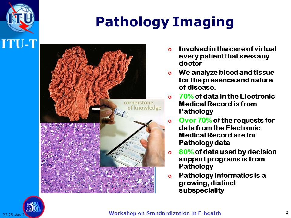 ITU-T May 2003 Workshop on Standardization in E-health Pathology Imaging o Involved in the care of virtual every patient that sees any doctor o We analyze blood and tissue for the presence and nature of disease.