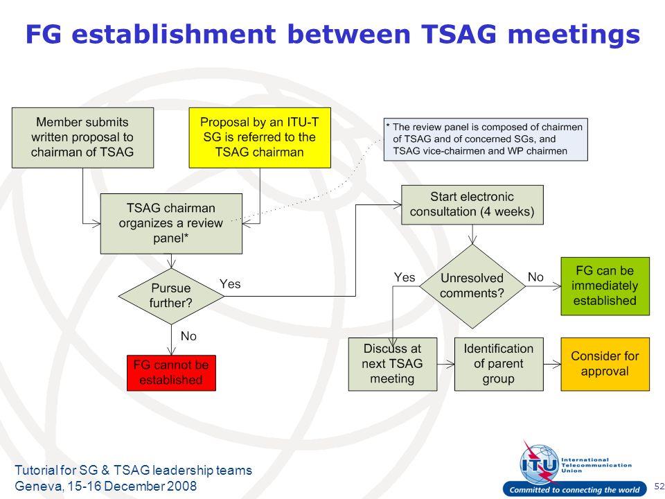 52 Tutorial for SG & TSAG leadership teams Geneva, 15-16 December 2008 FG establishment between TSAG meetings