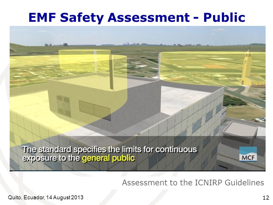 Quito, Ecuador, 14 August EMF Safety Assessment - Public Assessment to the ICNIRP Guidelines